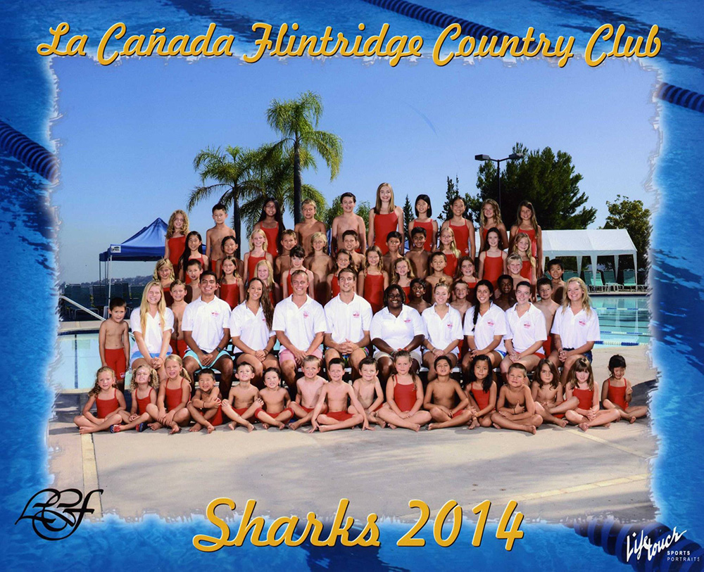 2014-Shark-swim-team