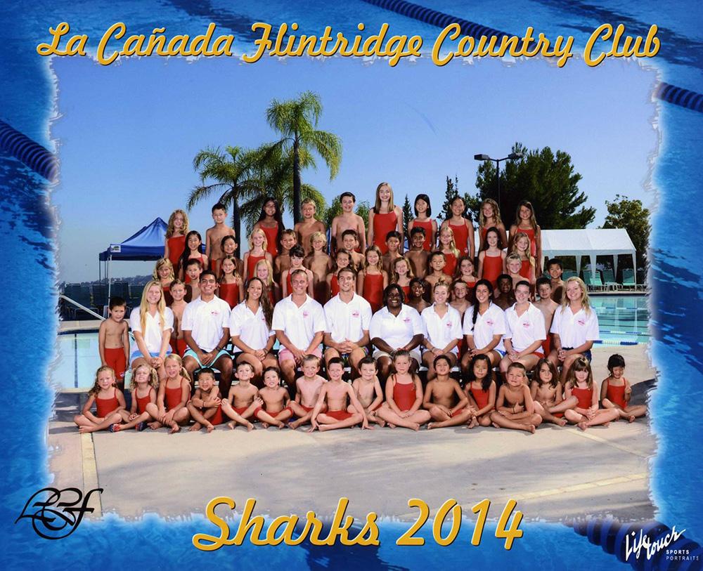 2014-Shark-swim-team