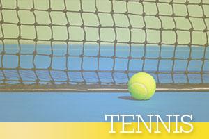 Tennis-ball-at-net
